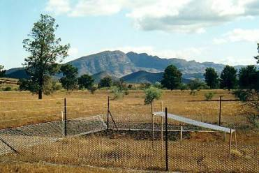 Burning, grazing and rainfall treatments in the Flinders Ranges